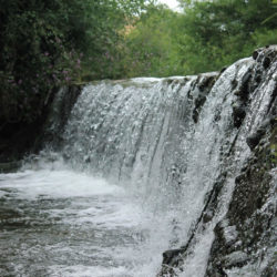 Ribera de Usagre